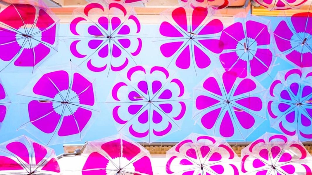 Pink Flower Power Umbrella Sky - Sanary-sur-Mer'19