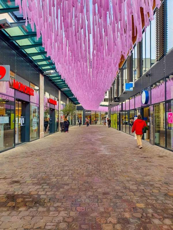 ピンクの10月-Bourges、20202