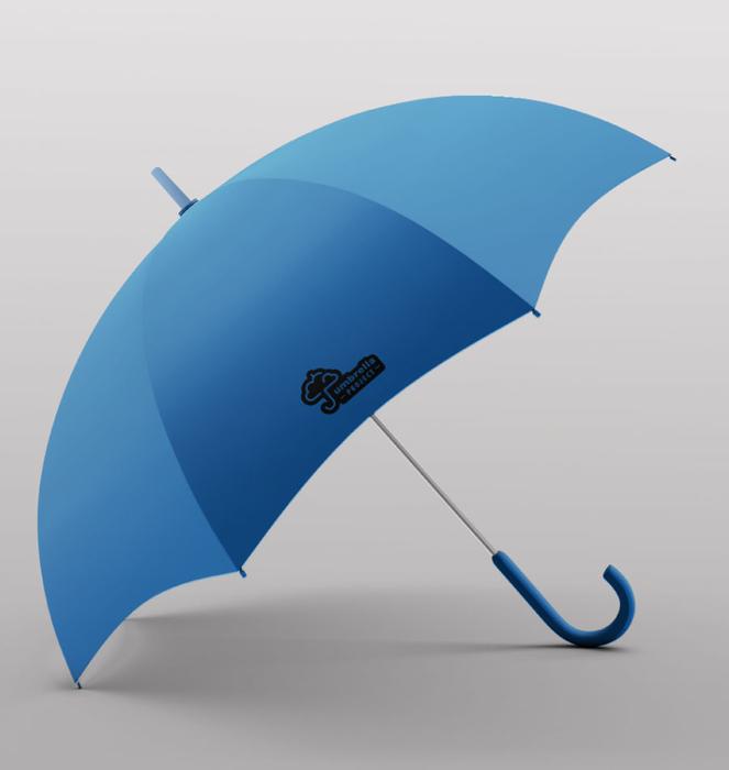 Exhibitor with 30 umbrellas 2