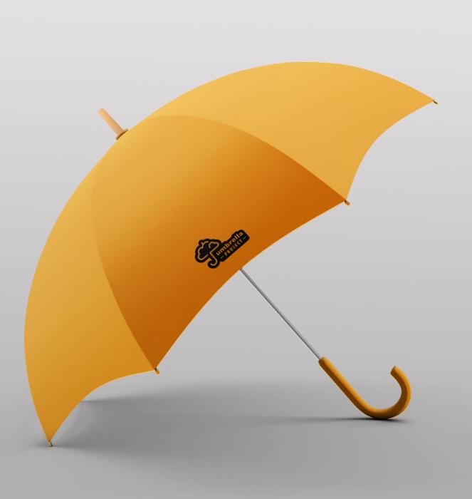 Exhibitor with 30 umbrellas 5